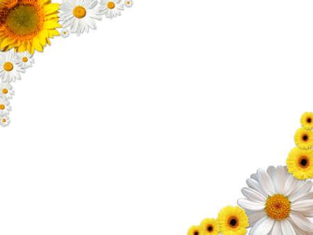 Photo pour A frame made of white and orange flowers - image libre de droit