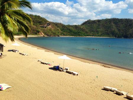Pico de loro in batangas