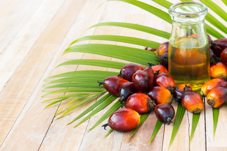 palm oil fruits on on wooden surface