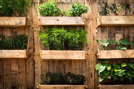 Grow vegetables in limited areas,vegetable gardening ideas.