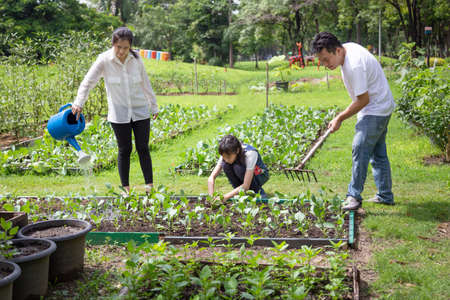 Photo pour Happy asian family,parents help,care,daughter to grow vegetables in farm,father working using rake in organic garden,mother watering plants with watering can,vegetables gardening,agriculture,activites concept - image libre de droit