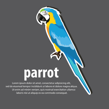 Cartoon parrots wild animal birds. Tropical parrots feather zoo birds, tropical fauna macaw . Brazil Macaw color blue . vector illustration.