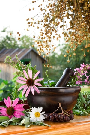 mortar and pestle with healing herbs