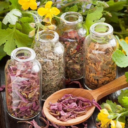 healing herbs in glass bottles, dried healthy plants in wooden spoon, herbal medicine