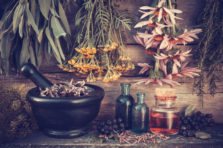 Photo for Vintage stylized photo of  healing herbs bunches, black mortar and oil bottles, herbal medicine. - Royalty Free Image