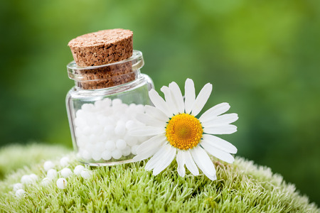 Bottle of homeopathy globules and daisy flower on green moss.