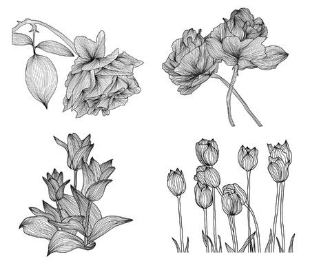 set of elegant decorative rose and tulip flowers for your design