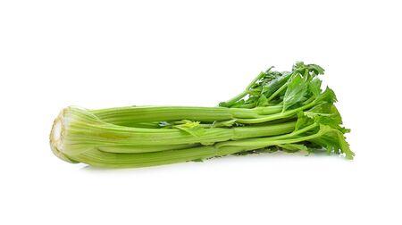 Foto für Celery isolated on white background - Lizenzfreies Bild