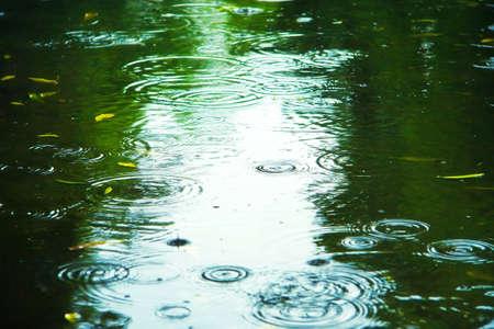 Puddle with splashes and reflections. Sad autumn mood.