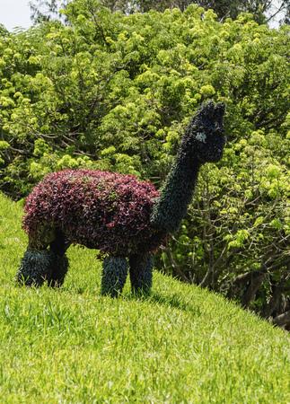 Green Llama in Parque de la Amistad, Friendship Park, Santiago de Surco District, Lima, Peru