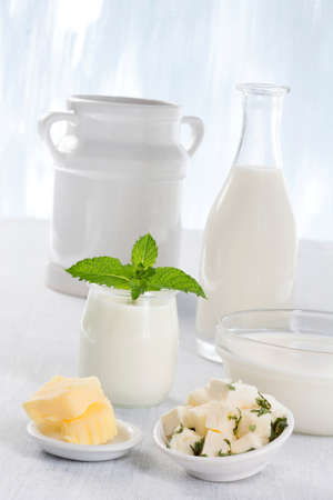 Dairy Products,  Includes: Milk, Various Types of Cheese, Butter, Ricotta and Yogurt..