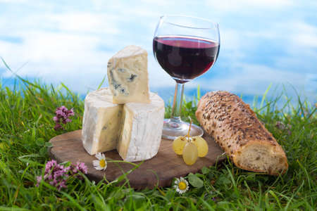 Photo pour glass of wine, cheese and bread, laid in the grass, picnic stage. - image libre de droit