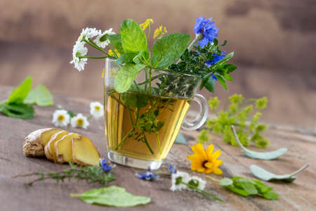 Various dried meadow herbs and herbal tea on old wooden table. fresh medicinal plants and in bundle. Preparing medicinal plants for phytotherapy and health promotion