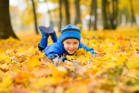 boy in blue jacket and hat raking an armful of yellow maple leaves in an autumn park