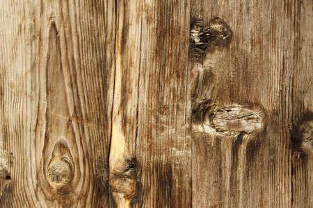 Wood Grain Close Up Wall Mural