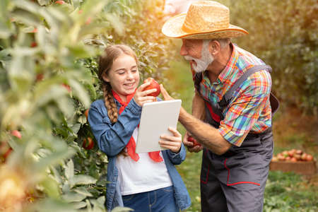 Photo pour Smiling teen granddaughter using tablet in apple orchard with grandfather - image libre de droit