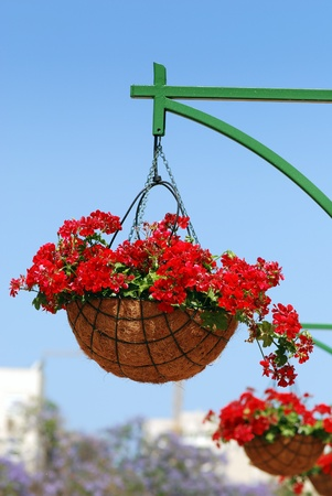 Flower basket on a post