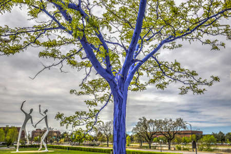 Dimopoulos Blue Trees in Denver