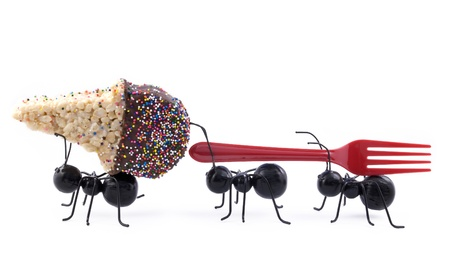 Toy black ants carrying a cereal treat ice cream cone and a fork, concept, isolated on white background, horizontal with copy space