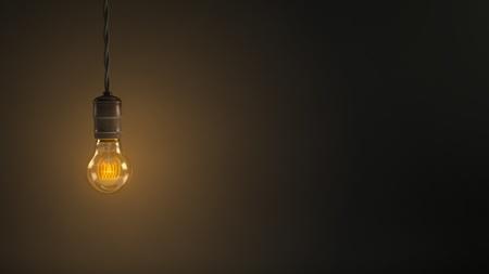 Vintage Hanging Light Bulb