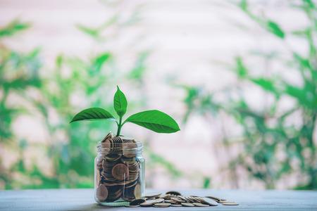 Photo pour Planting coins in hemp bags - investment ideas for growth - image libre de droit