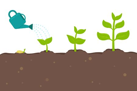 Illustration pour Plant growth vector Seedlings sprouting from seeds turn into large trees. - image libre de droit