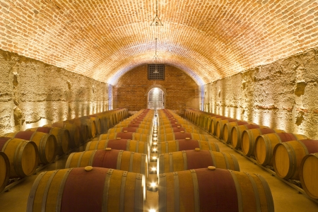 Rows of Wine Barrels in a Cellar