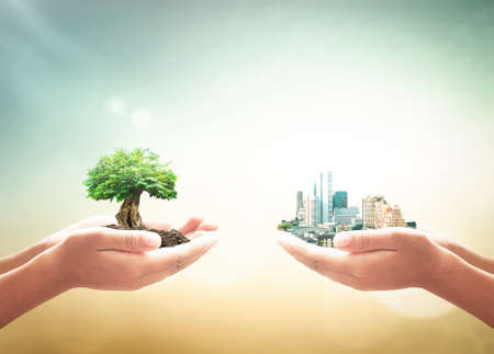 Photo pour Sustainable development goal (SDGs) concept: Two human hands holding big tree and city over blurred green nature background - image libre de droit
