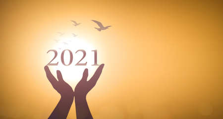 Photo for New year 2021 concept: Silhouette hands show 2021 against birds flying on blurred yellow sunrise background - Royalty Free Image