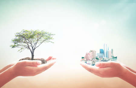 Photo pour World environment day concept: Two human hands holding big tree and city over blurred nature background - image libre de droit