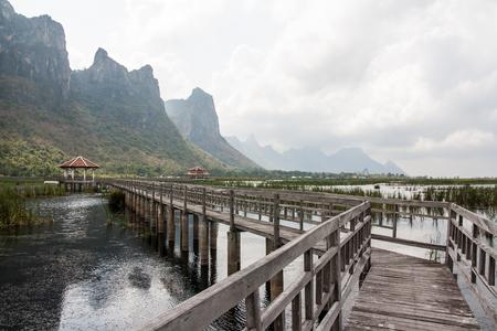 The Nature Trail Wooden Bridge