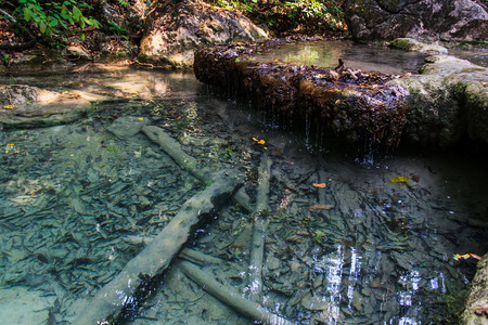 Clear water , Erawan Waterfall , Kanchanaburi