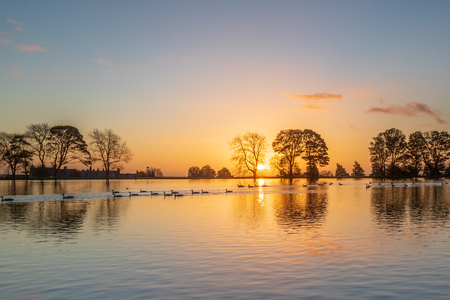 Foto de A beautiful sunrise on a lake in Yorkshire - Imagen libre de derechos