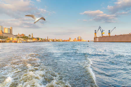 Photo for Hamburg cityscape seen from a boat on the river Elbe under beautiful summer sky - Royalty Free Image