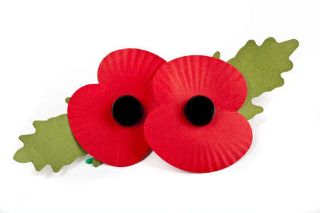 Poppies to commemorate the Commonwealth War Deaths in both World Wars