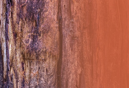 Close up of tree bark with vertical ridges, rust red, grey and brown, for copy or texture  Rust overlay on right  Horizontal format