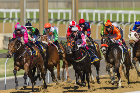 Horse racing jockeys and horses in closeup, speed action photo