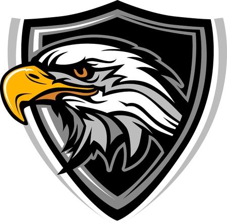 Eagle Head Graphic Mascot Image