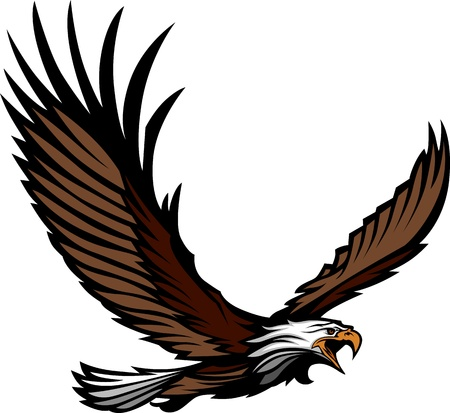 Graphic Mascot Image of a Flying Eagle with Wings Vector Illustration