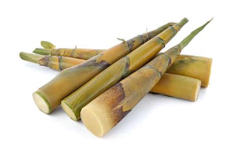 Photo pour Bamboo shoot on a white background - image libre de droit