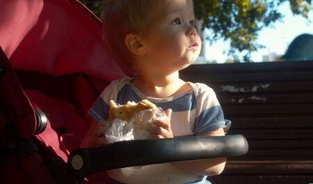 Photo for Small kid sitting in a stroller and eating bun. Sunny and windy day - Royalty Free Image