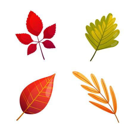 Foto für Set of bright colorful autumn fall leaves. - Lizenzfreies Bild