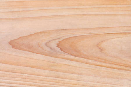 wood texture of the fir board