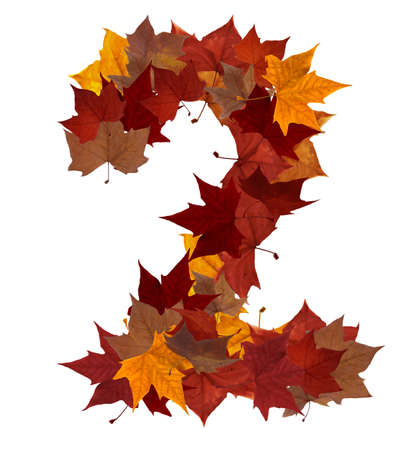 Number 2 made with autumn leaves isolated on white with clipping path. So you can easily cut it out and place over the top of a design. Find others symbols in our portfolio to compose your own words.