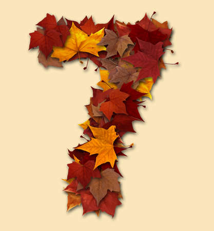 Number 7 drop shadow made with autumn leaves Isolated with clipping path, so you can easily cut it out and place over the top of a design. Find others types in our portfolio to compose your own words.の写真素材