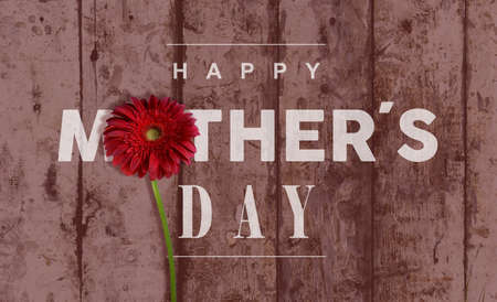 Happy Mother day vintage retro wood background with macro close up red flower ideal for greeting card and poster design.