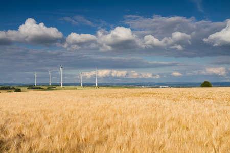 Golden wheat field and wind turbines, Hohe Strasse, Wetterau, Germany