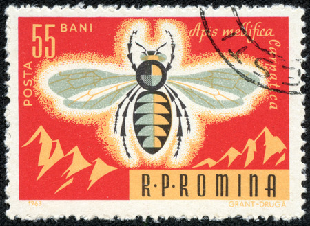 ROMANIA -CIRCA 1963: Bees are flying insects closely related to wasps and ants, and are known for their role in pollination and for producing honey and beeswax, circa 1963.