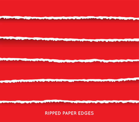 Illustration for Set of Ripped and Torn Paper Stripes. Texture of Paper with Damaged Edge Isolated on Transparent background. Vector illustration. - Royalty Free Image