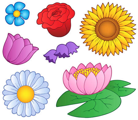 Various flowers set - vector illustration.